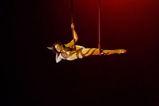Aerial Acrobatic Arts Festival - July 2015 - Photo by Kacey Raye