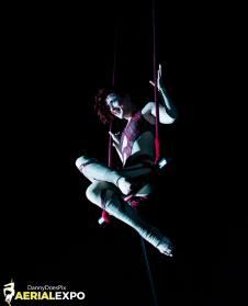Aerial Arts and Fitness Expo - July 2015